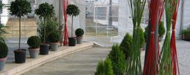 location de chapiteaux, tentes, barnums, pagodes, gardens, plantes vertes et pots