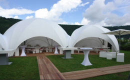 polydome-12