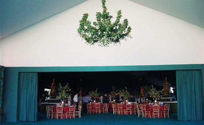 chapiteau-tissu-vert-30m-30m-Structura-4