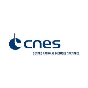 cnes-structura