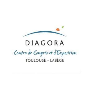 diagora-structura