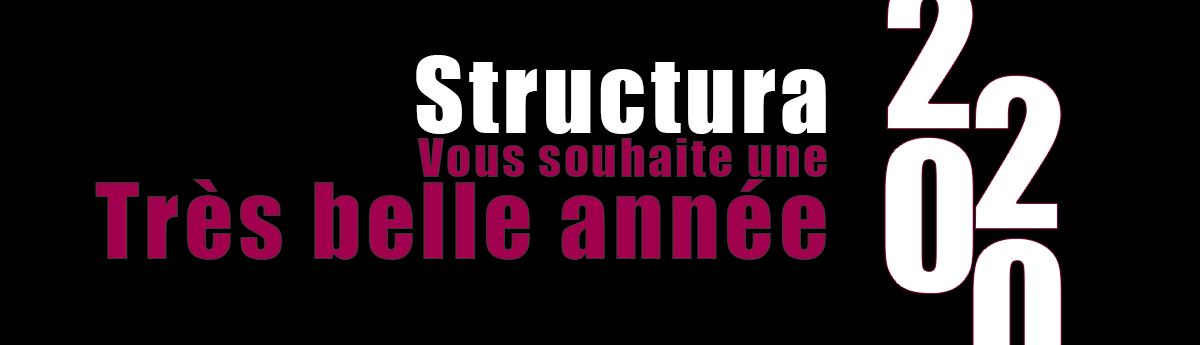 Structura Nouvel An 2020